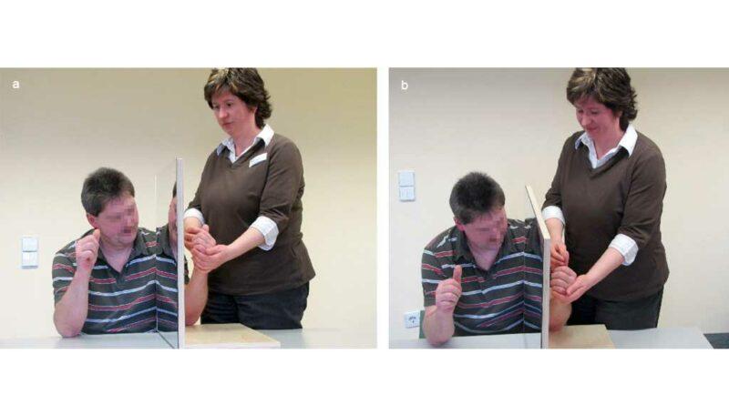 Durchführung von Spiegeltherapie: Führung bzw. aktive Bewegung der betroffenen Extremität.
