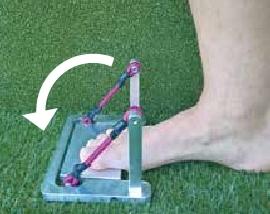 Abb. 1b Gerät zur Kräftigung der extrinsischen und der intrinsischen Fußmuskulatur. Endposition. Die Gummiseile besitzen unterschiedliche Steifigkeiten und können je nach Trainingsfortschritt ausgetauscht werden.