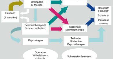 Kompetenznetzwerk Rückenschmerz mit Verzahnung von ambulanten, teilstationären und stationären Behandlungsangeboten mit festgelegten Inhalten auf den jeweiligen Ebenen und jeweils festgelegter Behandlungsdauer.