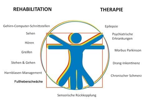 Neurotechnik – Neuroprothetik – Neuromodulation: Anwendungen finden sich in allen Bereichen der Therapie und Rehabilitation.