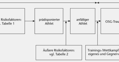 Wechselbeziehungen zwischen internen und externen Risikofaktoren für eine Sportverletzung (Bahr R, Krosshaug T. Understanding injury mechanisms: a key component of preventing injuries in sport. Br J Sports Med, 2005; 39 (6): 324-329).
