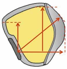 Anatomische Schaftform mit Verlauf der Vektoren (Quelle: BUFA, Dortmund).