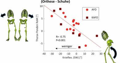 """Veränderungen der Knieflexion in der Schwungphase gegenüber dem Pendeln des Thorax über den Gangzyklus, gemessen mittels 3D-Ganganalyse (Differenz """"Gehen mit Orthesen"""" vs. """"Gehen mit Schuhen""""); Skelettanimationen und Pfeile visualisieren die wechselseitigen Bewegungseffekte auf den jeweiligen Achsen des Graphen."""